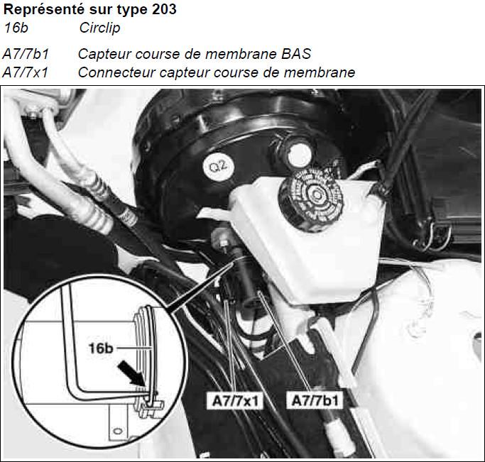 capteur-de-course-membrane-BAS.jpg