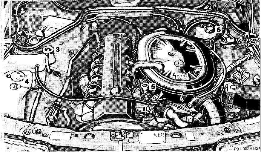 1-manuel-mercedes-190.jpg