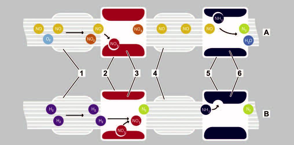 19-catalyseur-a-stockage-nox.jpg